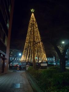 ロージナ茶房 大学通りのクリスマスイルミネーション