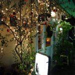 「黒猫茶房」で楽しむエイジングコーヒー、マスターの演奏も聴けるかも